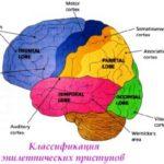 Классификация эпилептических приступов 2001