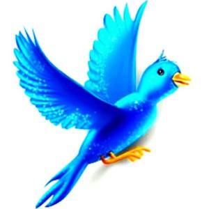 птичка Twitter Bird