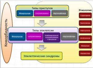 Классификация эпилепсий