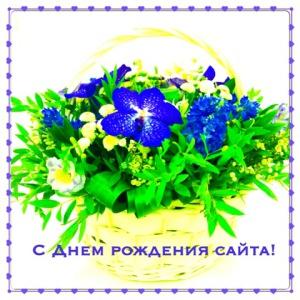 С Днём рождения сайт