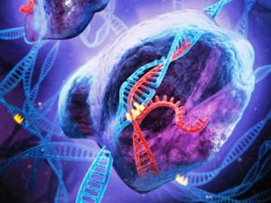 Технологии CRISPR - редактирование генома 1