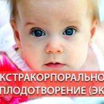 Можно ли делать ЭКО при эпилепсии. Показания и противопоказания к проведению экстракорпорального оплодотворения, прерыванию беременности.